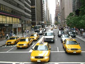 Los Taxistas De Nueva York Y Los Concejales De Gipuzkoa